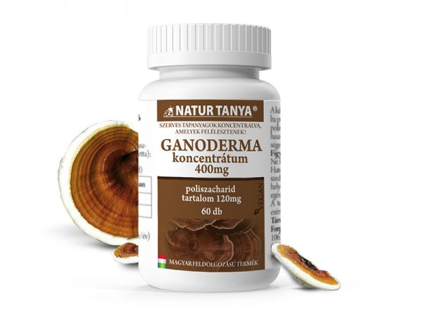 Natur Tanya® Szerves Ganoderma, Pecsétviaszgomba - egy olyan gomba, ami Kelet-Ázsiában gyógyszer.