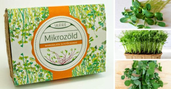 Mikrozöld ültetőcsomag – SALÁTAALAP MIX